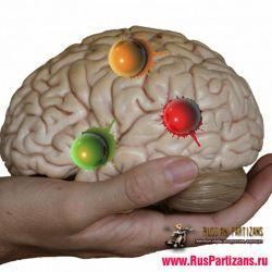 Психология в пейнтболе